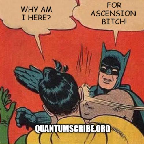 qs1345